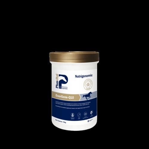 PlusVital Plusvital EnerGene-Q10