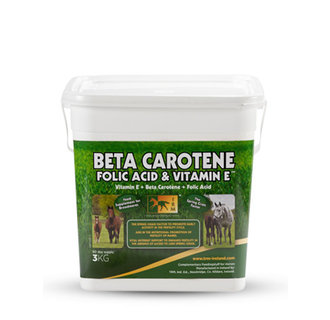Beta Carotene, Folic Acid & Vit. E
