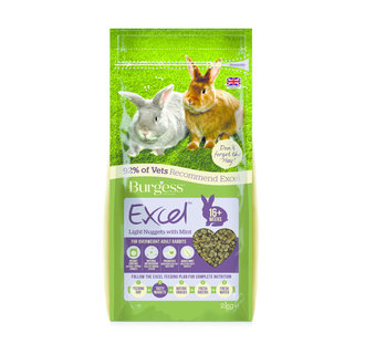 Excel Rabbit Light