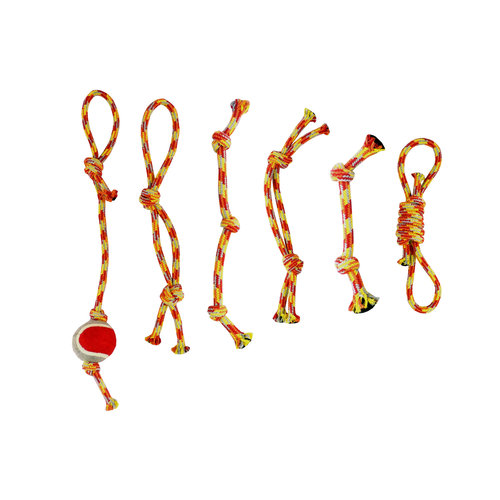 Papillon Assorted rope toys box 6
