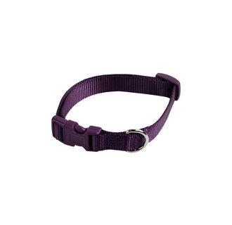 Basic nylon adjustable collar purple