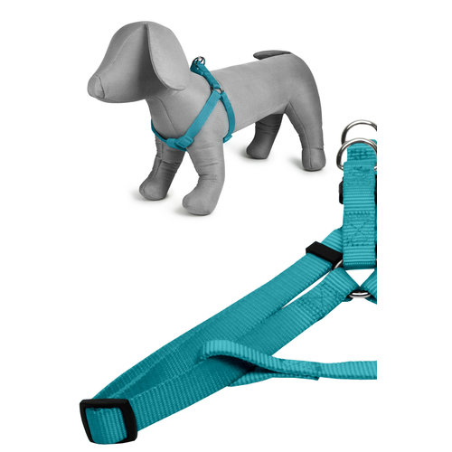 Papillon Basic nylon harness turquoise