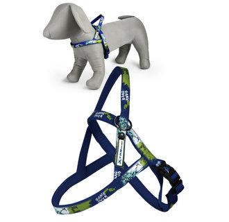 X-TRM Rock-N-Roll harness blue