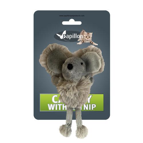 Papillon Maus auf der Karte + catnip