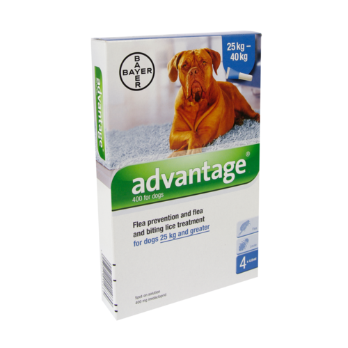 Bayer Advantage Hond