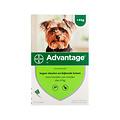 Bayer Advantage Hund