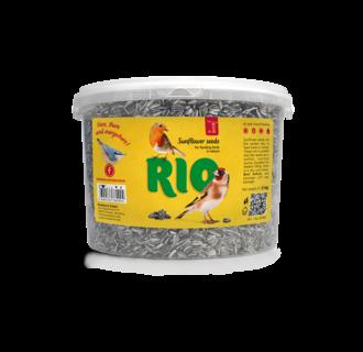 RIO Zonnebloemzaden, 2 kg
