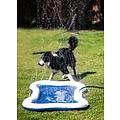 Quapas Dog Splash