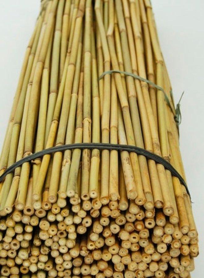 Bamboe leischerm