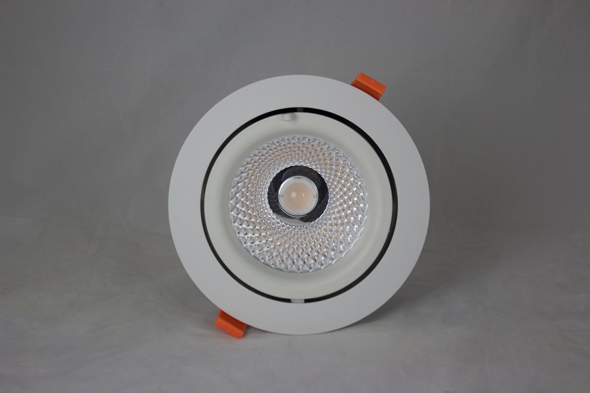 Downlighter LED COB Gimbal 30W, 3000K
