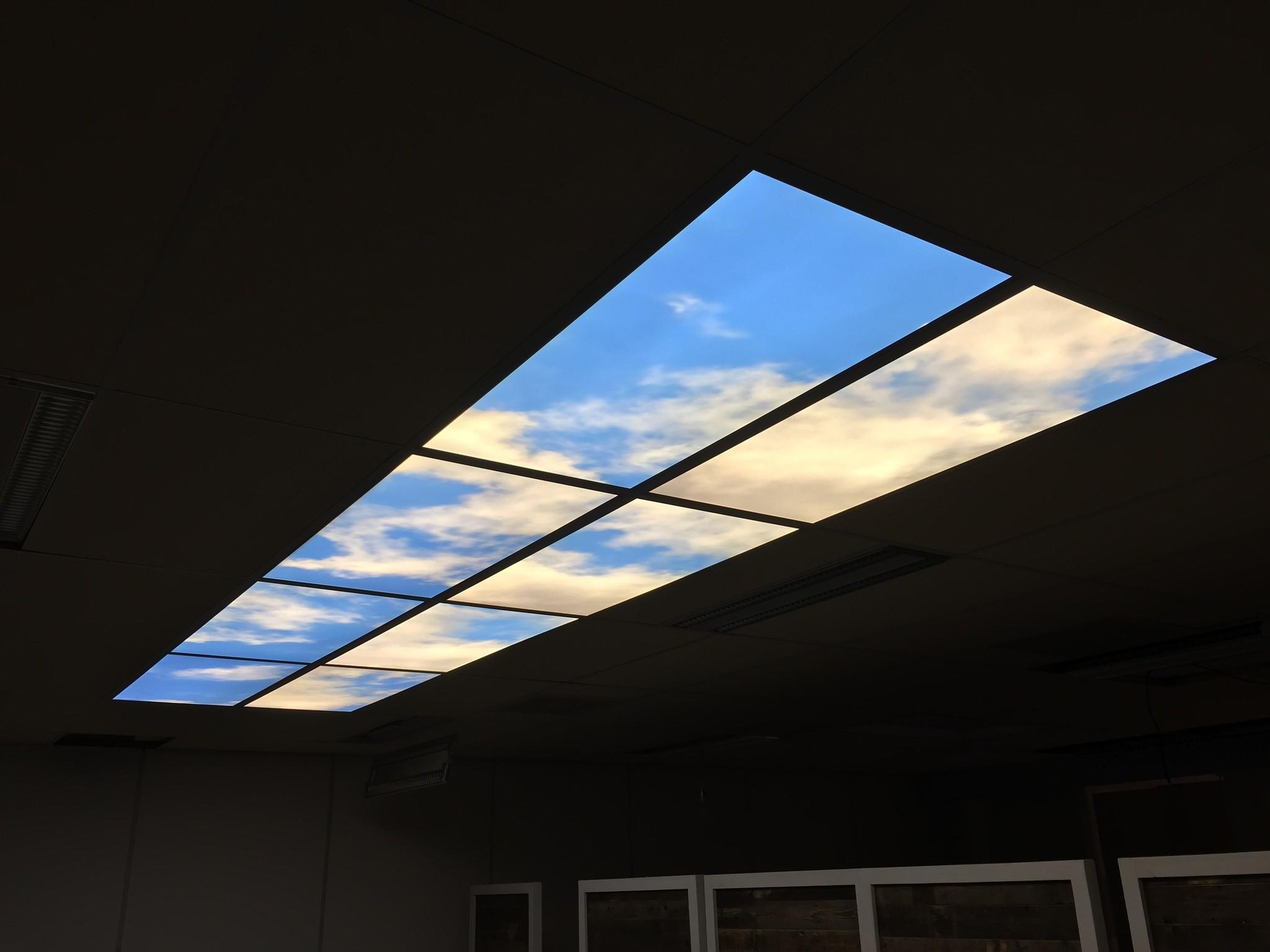 LED Fotopanelen 60x120cm, Incl. Bedrukking