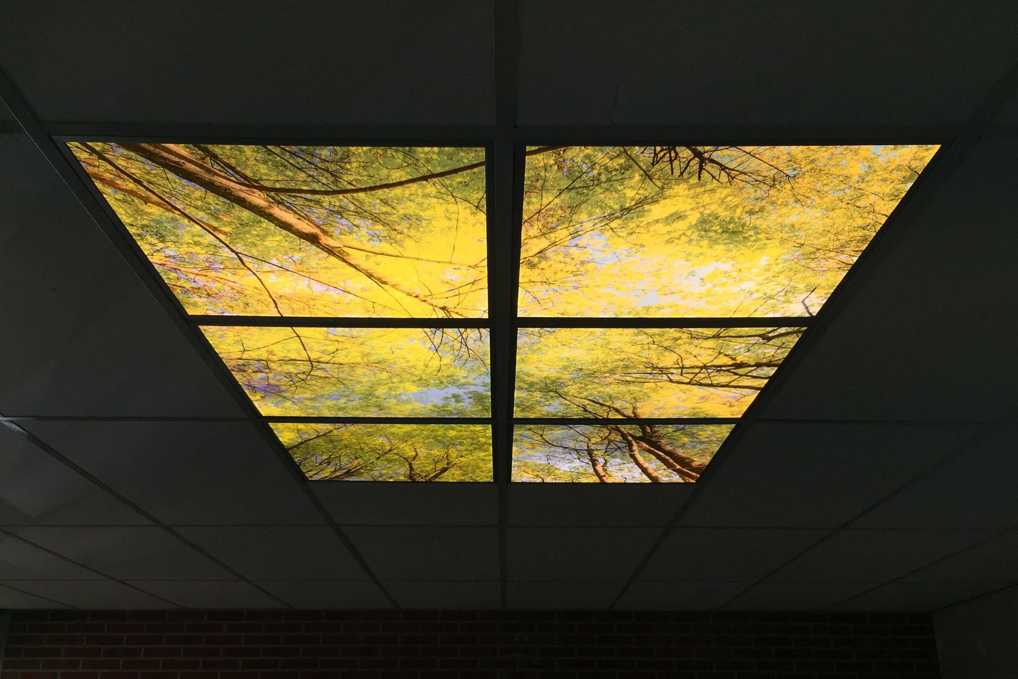 LED Fotopanelen 30x120cm, Incl. Bedrukking