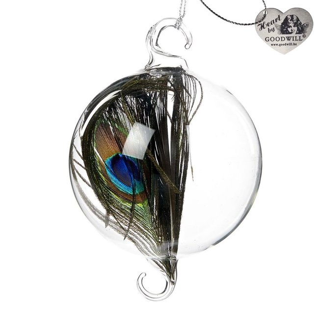 Good Will  Glass ball with peacock feather