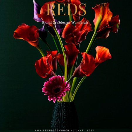 Wandkraft  Reds