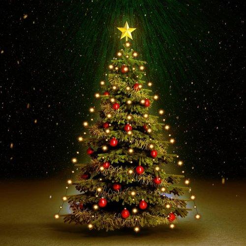 vidaXL Kerstboom netverlichting 210 LED's binnen en buiten IP44 210 cm
