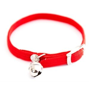 Martin sellier Halsband kat elastisch nylon rood