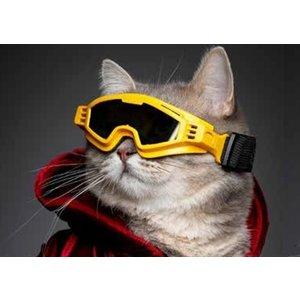 Croci Croci skibril hond horizon geel / zwart glas
