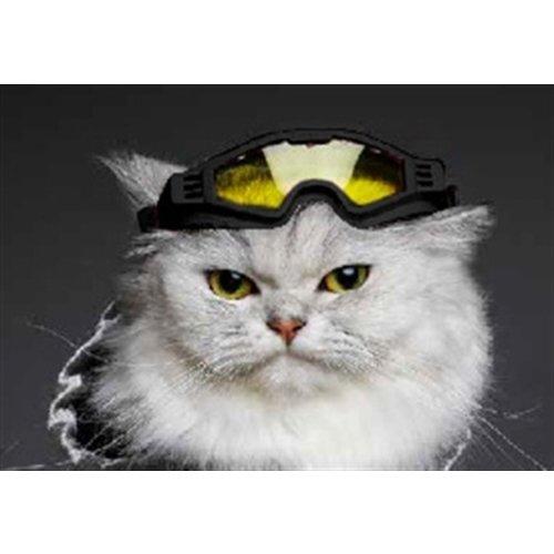 Croci Croci skibril hond horizon zwart / geel glas