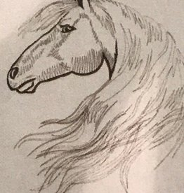 Sognoblu Dekbedovertrek Sognoblu Flanel Paard Linen/Black