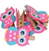 Hanging Carts Premium 6-Pack Uilen Kaartknijpers - Roze Blauw - 5x3x1cm | Knijpertjes om Kaarten op te Hangen