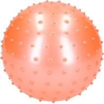 Educatieve Stekelige Bal voor Baby en Kinderen 19cm Roze