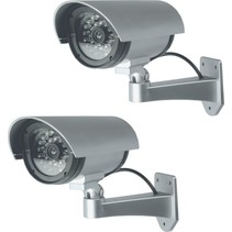 Dummy Security  Beveiligingscamera 2 Stuks