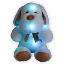 Knuffel Hond met ledlampjes  Hond 30cm