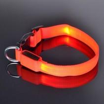 Halsband voor Honden met Led  39cm Rood
