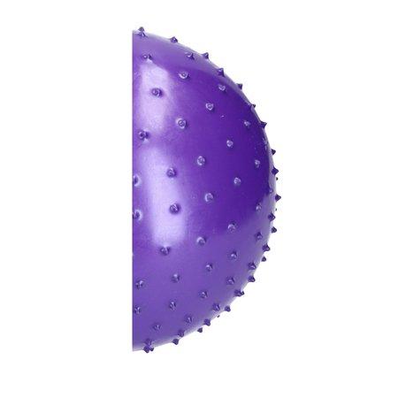 Banzaa BDO Speelbal Educatief – ideaal voor Binnen – 25cm – Groot Formaat – Paars