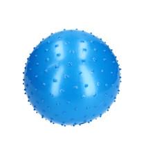 Banzaa Educatieve Stekelige Bal voor Baby en Kinderen 28 cm Blauw
