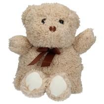 Pluchen Teddybeer Hitte Pittenzak – 30x21cm