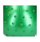 Banzaa  Educatieve stekelige Bal – 2 stuks met Pomp – Motorische en Sensorische Stimulatie –Roze, Groen 15cm