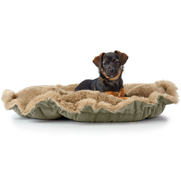8 MUSTHAVES voor je PUPPY