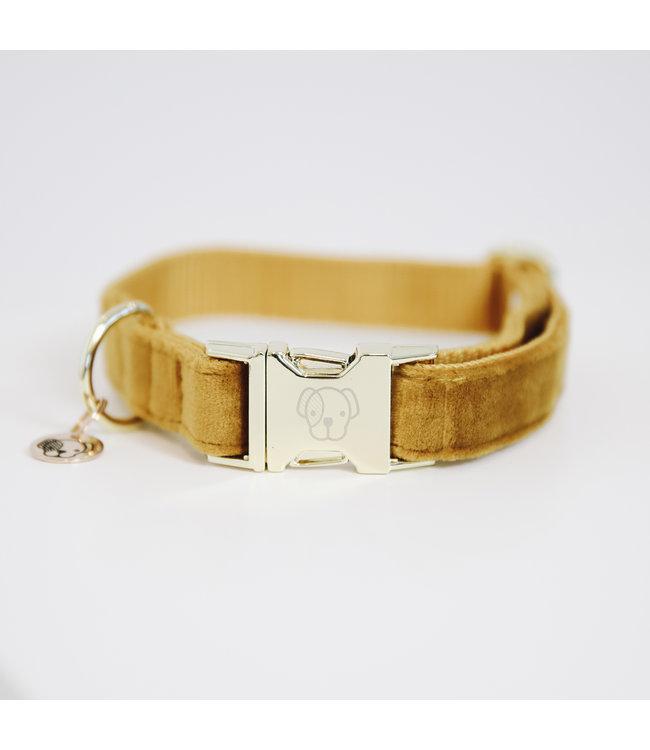 Kentucky Dogwear Halsband Velvet - Mosterd