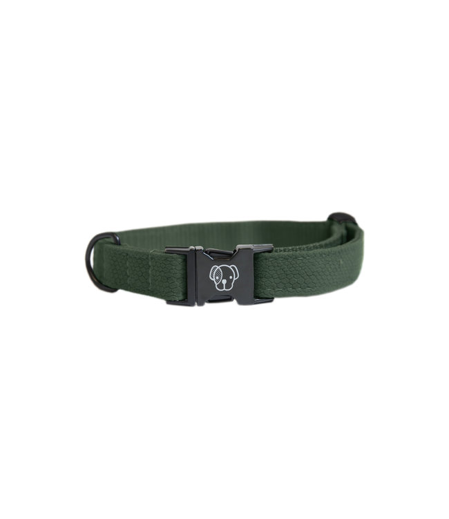 Kentucky Dogwear Halsband Hagedis Groen