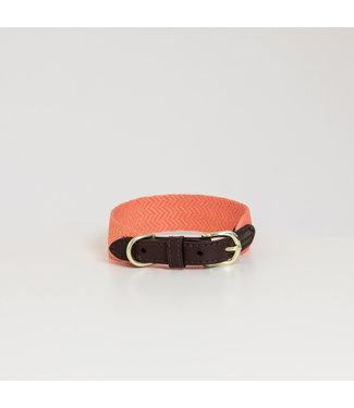 Kentucky Dogwear Halsband Jacquard - Oranje