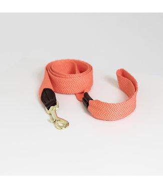 Kentucky Dogwear Hondenlijn Jacquard - Oranje