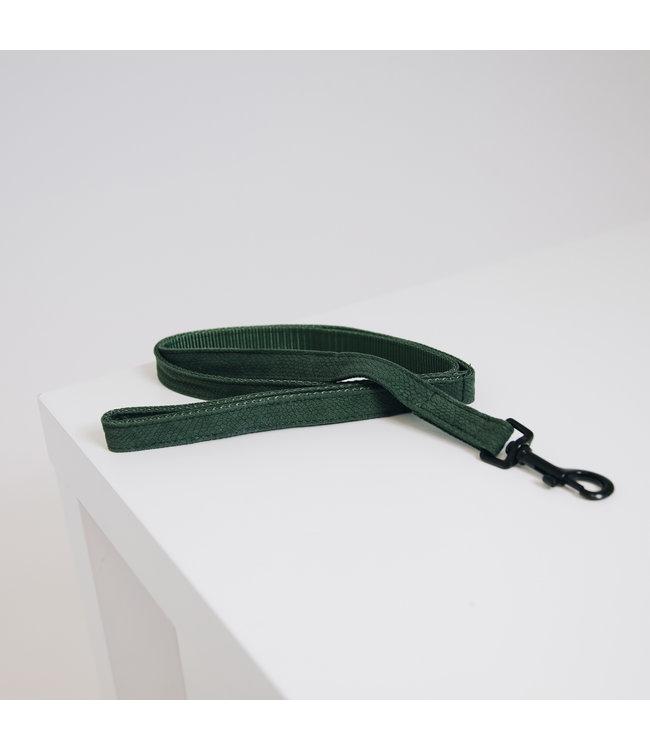 Kentucky Dogwear Leiband Hagedis Groen