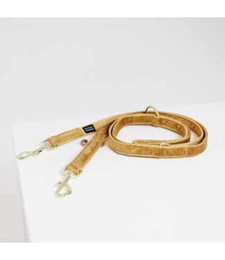 Kentucky Dogwear Leiband Velvet - Mosterd