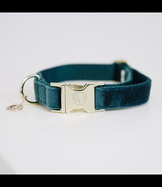 Kentucky Dogwear Halsband Velvet - Emerald