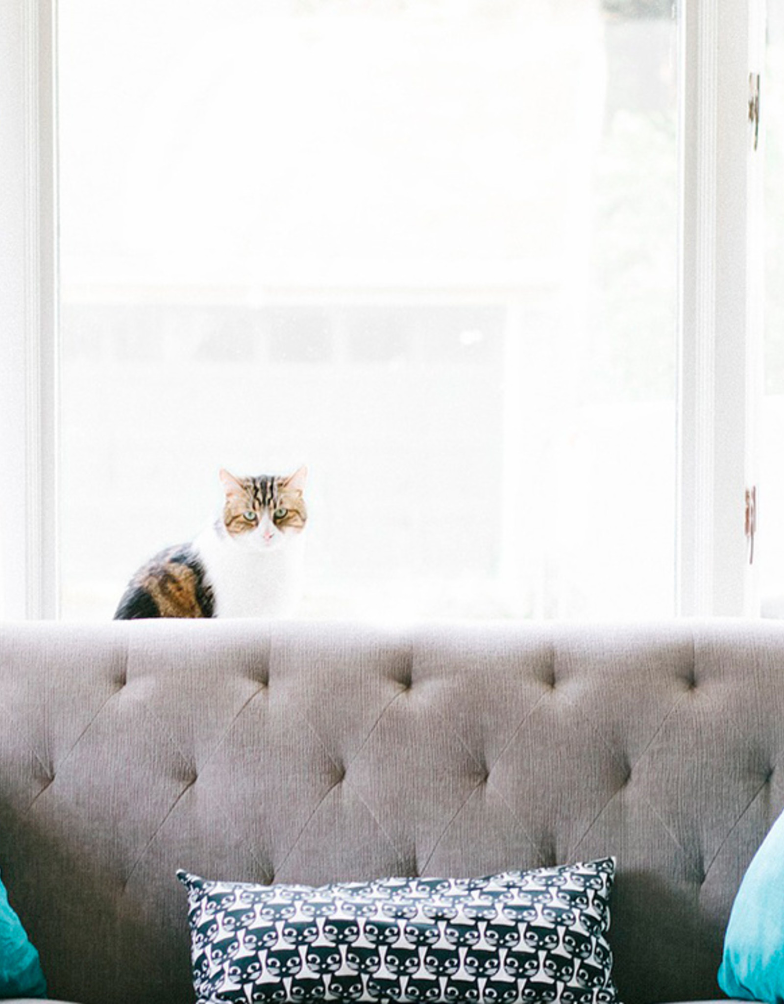 Amiko AMIKO HOME Gordijnregelaar - Smart Home - ZigBee