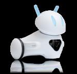 Onderwijs / Robotica