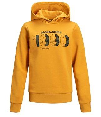 Jack & Jones Junior JCORAD SWEAT HOOD JR