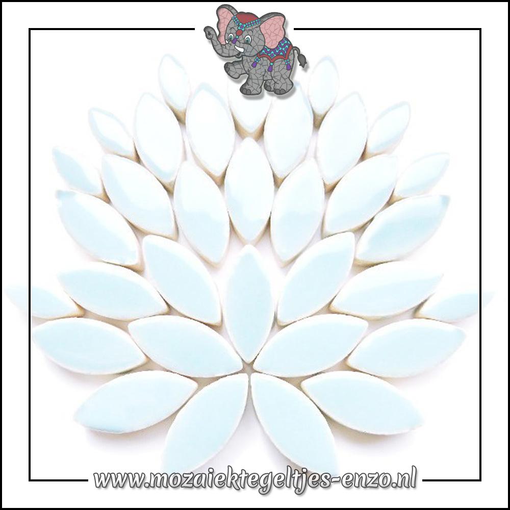 Keramiek Petals Normaal   14-21mm   Enkele Kleuren   50 gram  Ice Blue