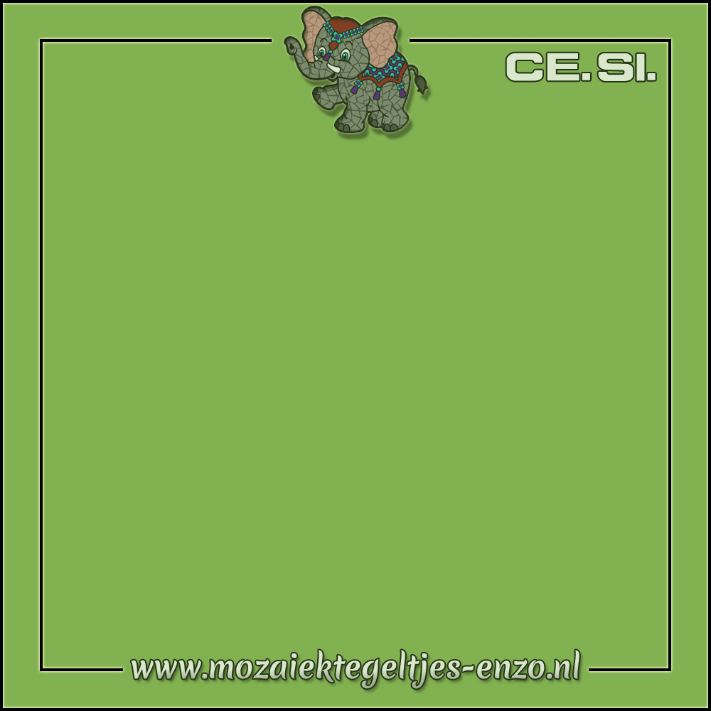 Cesi Mat Glanzend | 20cm | Op bestelling | 1 stuks |Kiwi