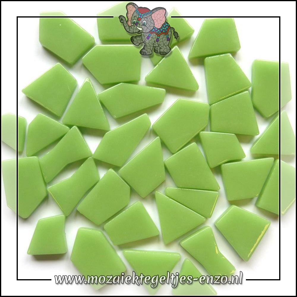 Snippets Puzzelstukjes Normaal   Enkele Kleuren   50 gram  Mint Green