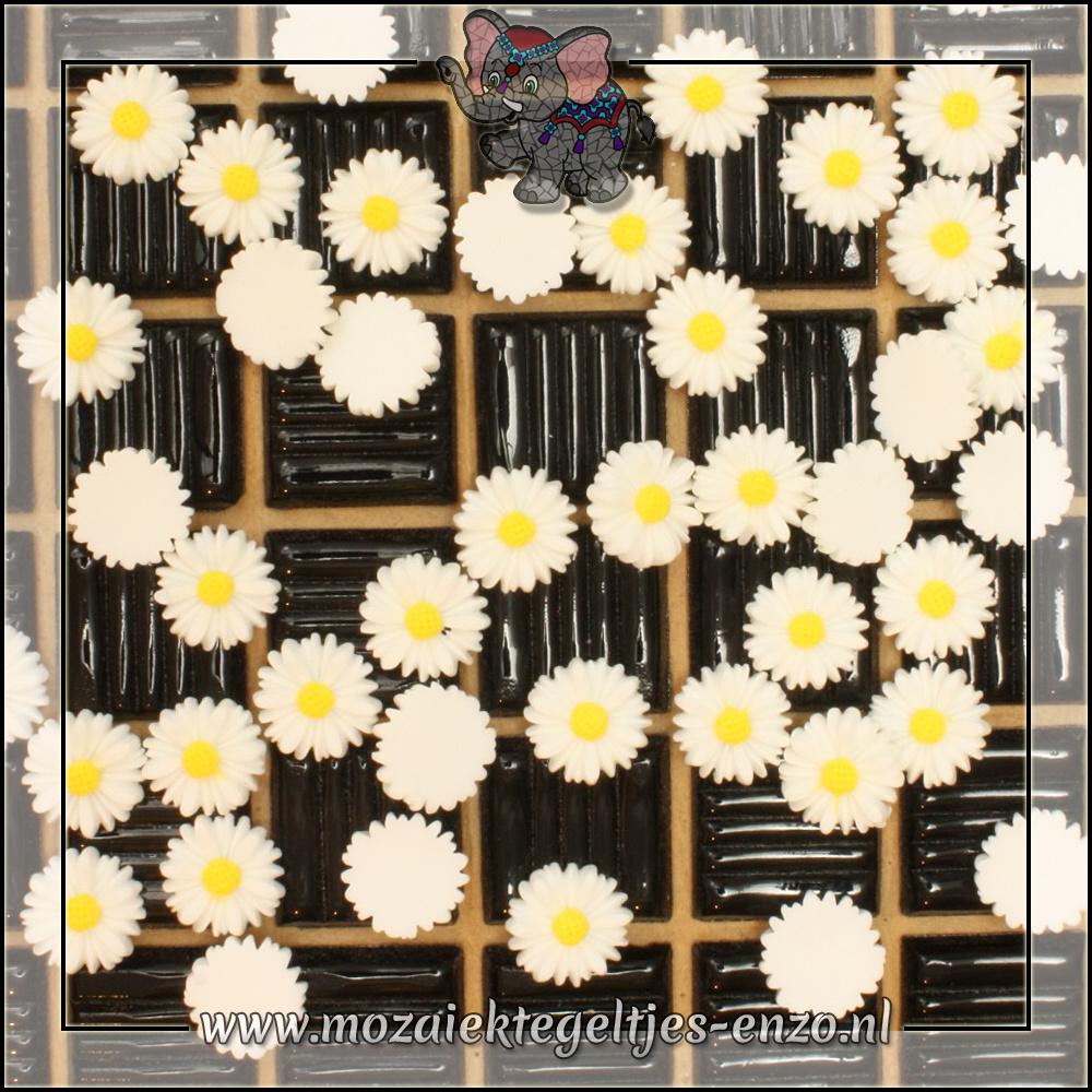 Cabochon plaksteen | 13 mm | Platte onderkant | 1 stuks | Margriet 2