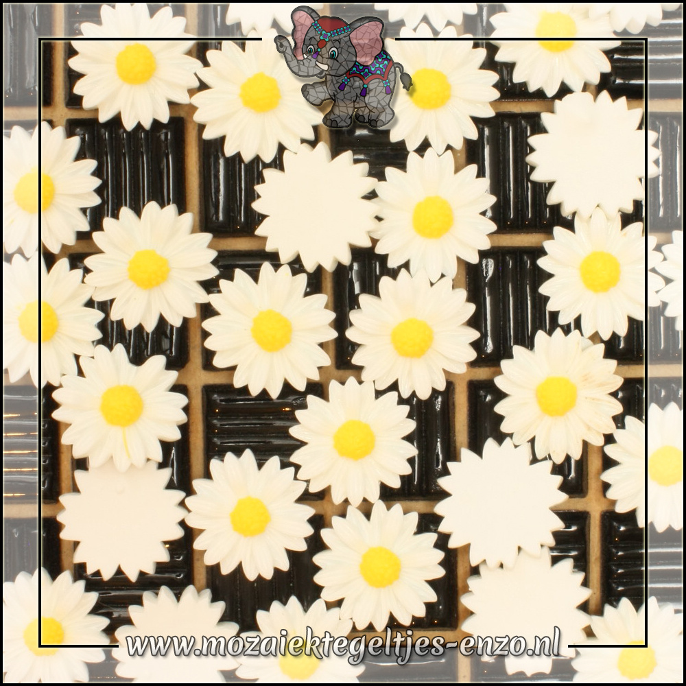 Cabochon plaksteen | 22 mm | Platte onderkant | 1 stuks | Margriet 3