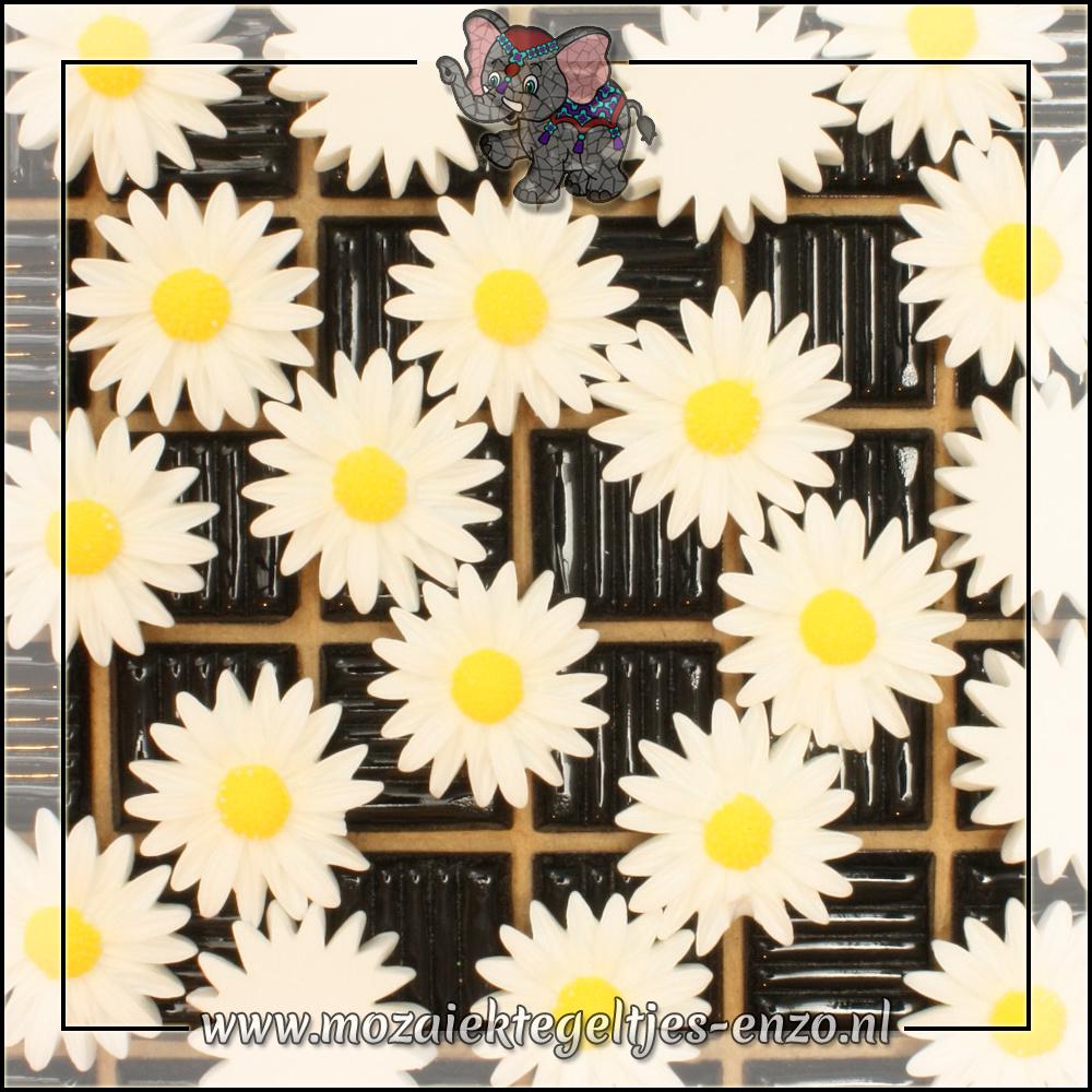 Cabochon plaksteen   26 mm   Platte onderkant   1 stuks   Margriet 4
