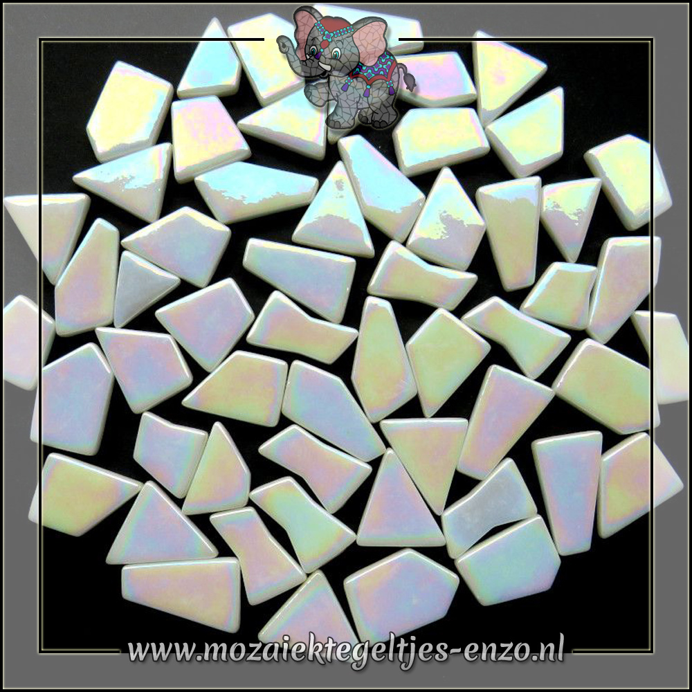Snippets Puzzelstukjes Parelmoer | Enkele Kleuren | 50 gram | Opal White
